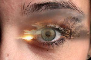 Through my eyes 10