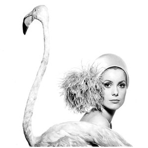 Catherine Deneuve, 1968 © David Bailey