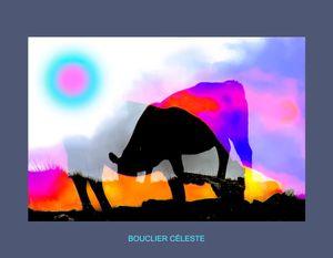 Bouclier céleste