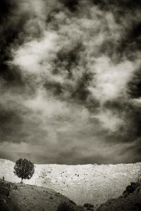 Alone © Audrey Connolly, United States