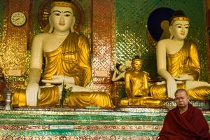 Praying monk in Yangon