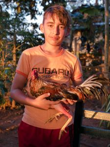 Boy with Pet Gamecock, Viñales Cuba