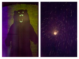 Bear & Fireworks