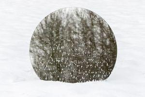 Snow Globe (2017)