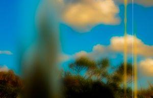 Landscape-004
