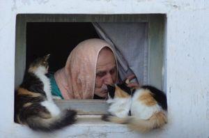 L'homme aux chats, Salé, Maroc, 2011