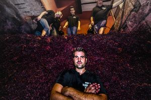 La pared de uva