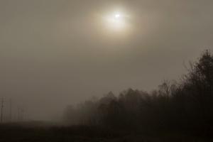 Sunrise Fog at the Chalmette Battlefield, January 21, 2016