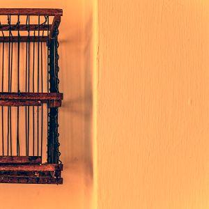 The cage. / La gabbia.