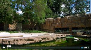 Beijing Zoo (2015)