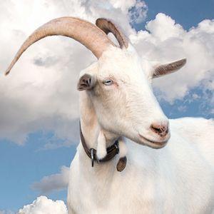 Goat's dream