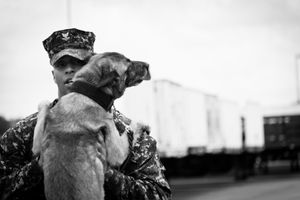Navy Working Dog and Handler, Norfolk VA, May 2013