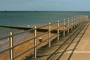 Afternoon Promenade