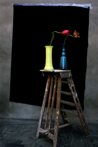 Still Life with Two Tulips and a Ladder,  Studio, Antwerp
