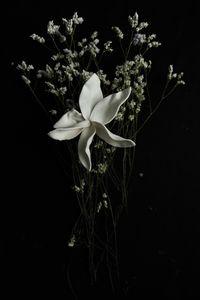 Flowery 4