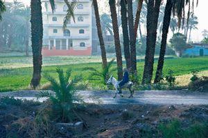 Life along the Nile 002
