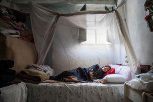 Feeling at Home, Libano 2012
