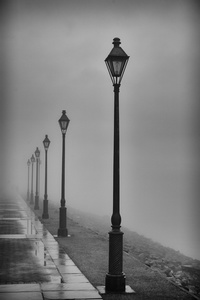 Lamposts in Fog