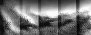 Rexham Dune 1