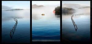 The quiet of Silence... triptych.