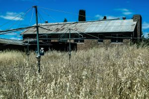 Remnants of Abandonment - 5