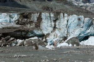 The naked man in front of the melting glacier ice at the Großglockner