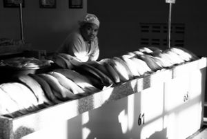 Fishmonger, Maputo, Angola