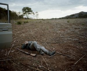 untitled hunter, crop field, zimbabwe-from the series 'hunters'-David Chancellor