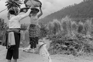 Women and Baskets
