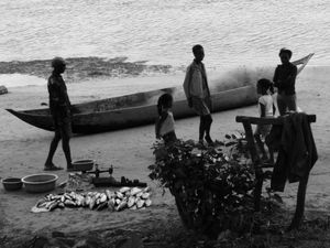 Selling Fish on the Seashore