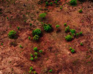 Australia VII