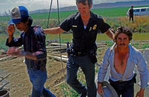Arrest in the fields