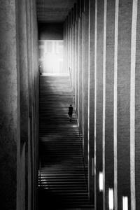 The SIlence Of Munich