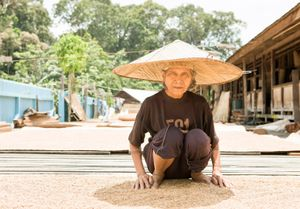 Preparing rice for storage, Sungai Utik, Borneo, Indonesia