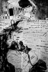 Baobab #3