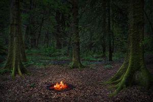 Fire 5, 201