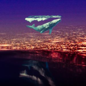 Song Of A Whale