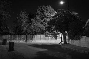 Late Evening Serenity