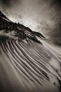 Wind on Sand, Pea Island