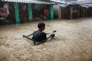 Against the Flood