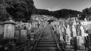 """Memorial Grounds"" © Kamau Akabueze"