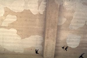 Concrete skies