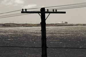 Wind Farm and Coal Plant, Port Hawkesbury, Nova Scotia