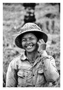 Rice harvester in Bali