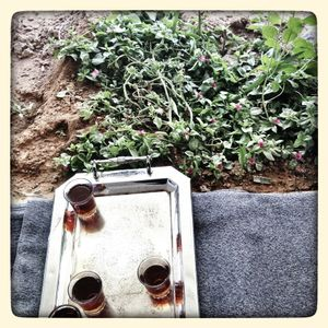 Mint tea being served in the garden of a family's home in Za'atari