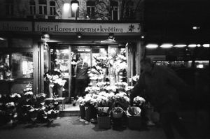 Flowers from Prague