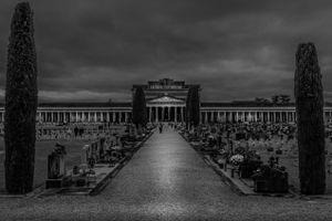 Avenue of remembrance