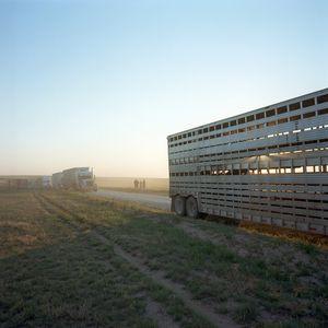 Four Sixes Ranch, Texas