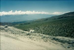 Camino a Cafayate. Salta. Argentina