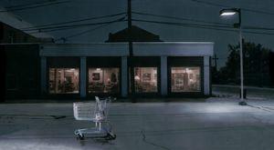 Untitled (shopping cart) © Hans Gindlesberger